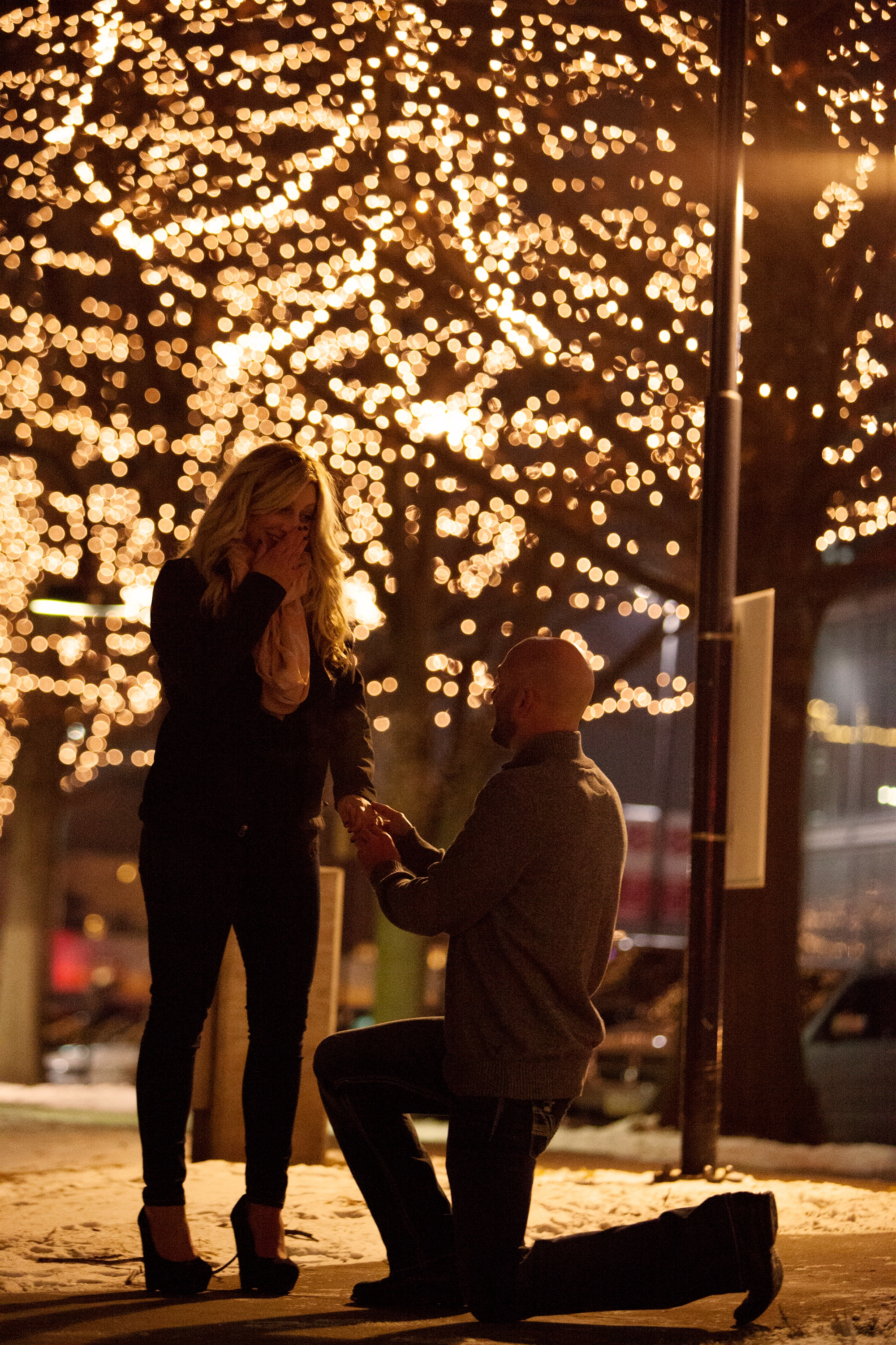 Christmas Tree Proposal -  Flickr Creative Commons