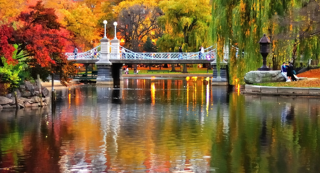Boston-Public-Garden-in-Autumn.jpg