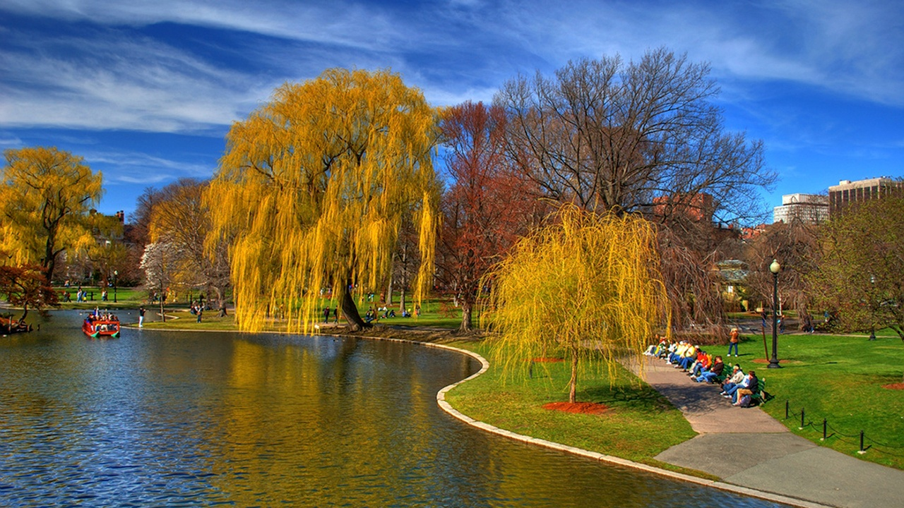 Boston Common Historic Proposal