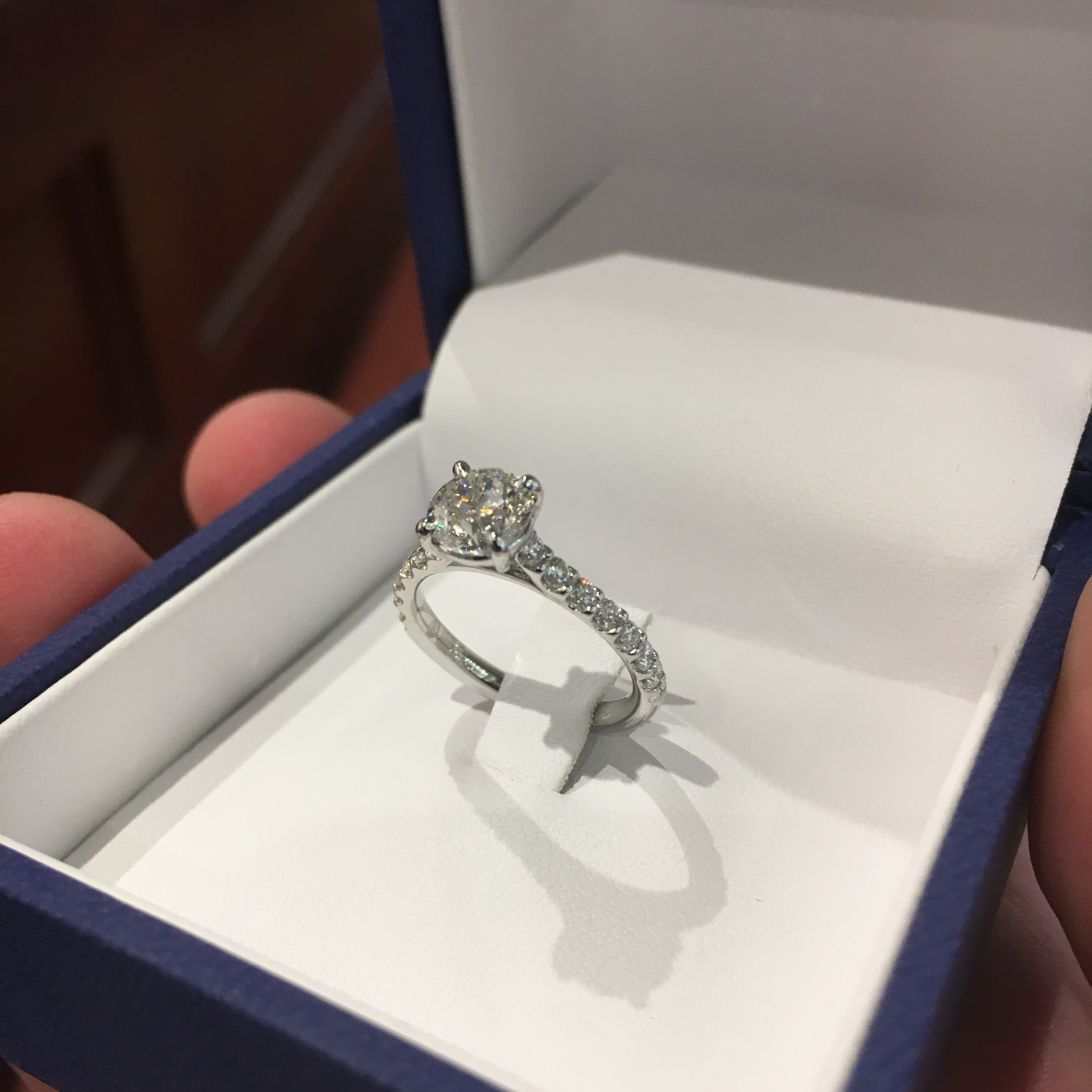 lauren-and-domenic-ring